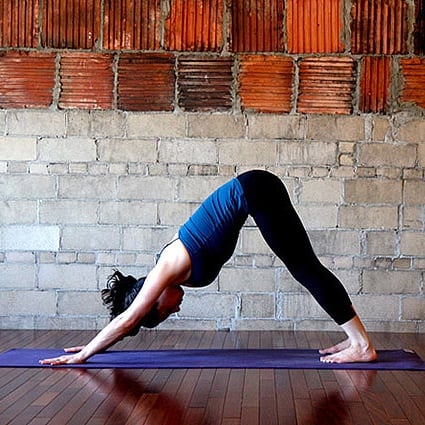Strike a Pose: Downward Facing Dog