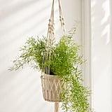 Ira Hanging Planter