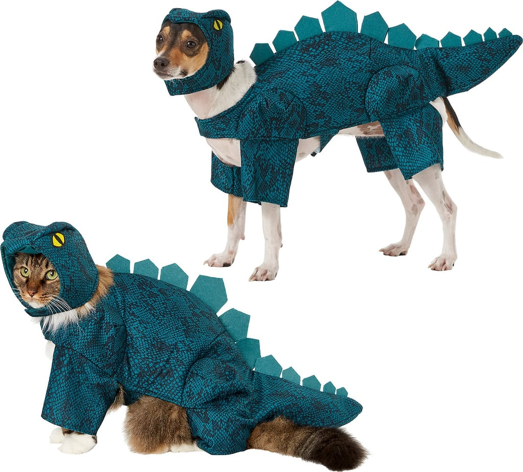 Frisco Stegosaurus Dinosaur Dog & Cat Costume