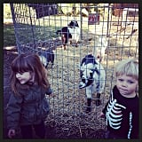 Harper Smith visited a petting zoo with her cousin. Source: Instagram user tathiessen
