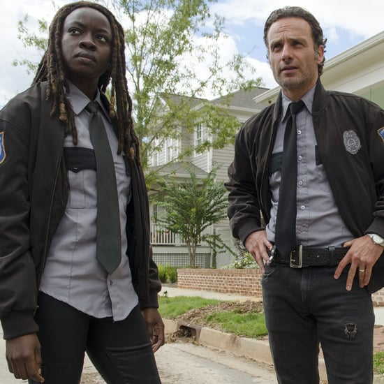 The Walking Dead Rick and Michonne GIFs
