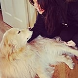 Account Manager Amanda Pine shared a sweet photo of her sister with her Golden Retriever, Cody.