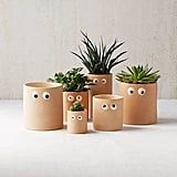 Googly Eye Planters