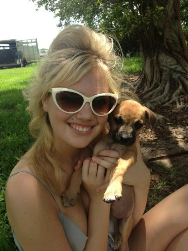 Kate Upton channeled '60s coolness with cat-eye sunglasses and an adorable little dog.  Source: Twitter user KateUpton