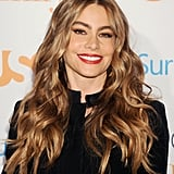 We loved Sofia Vergara's vaguely orange eye shadow and curls at the Modern Family fan appreciation day.
