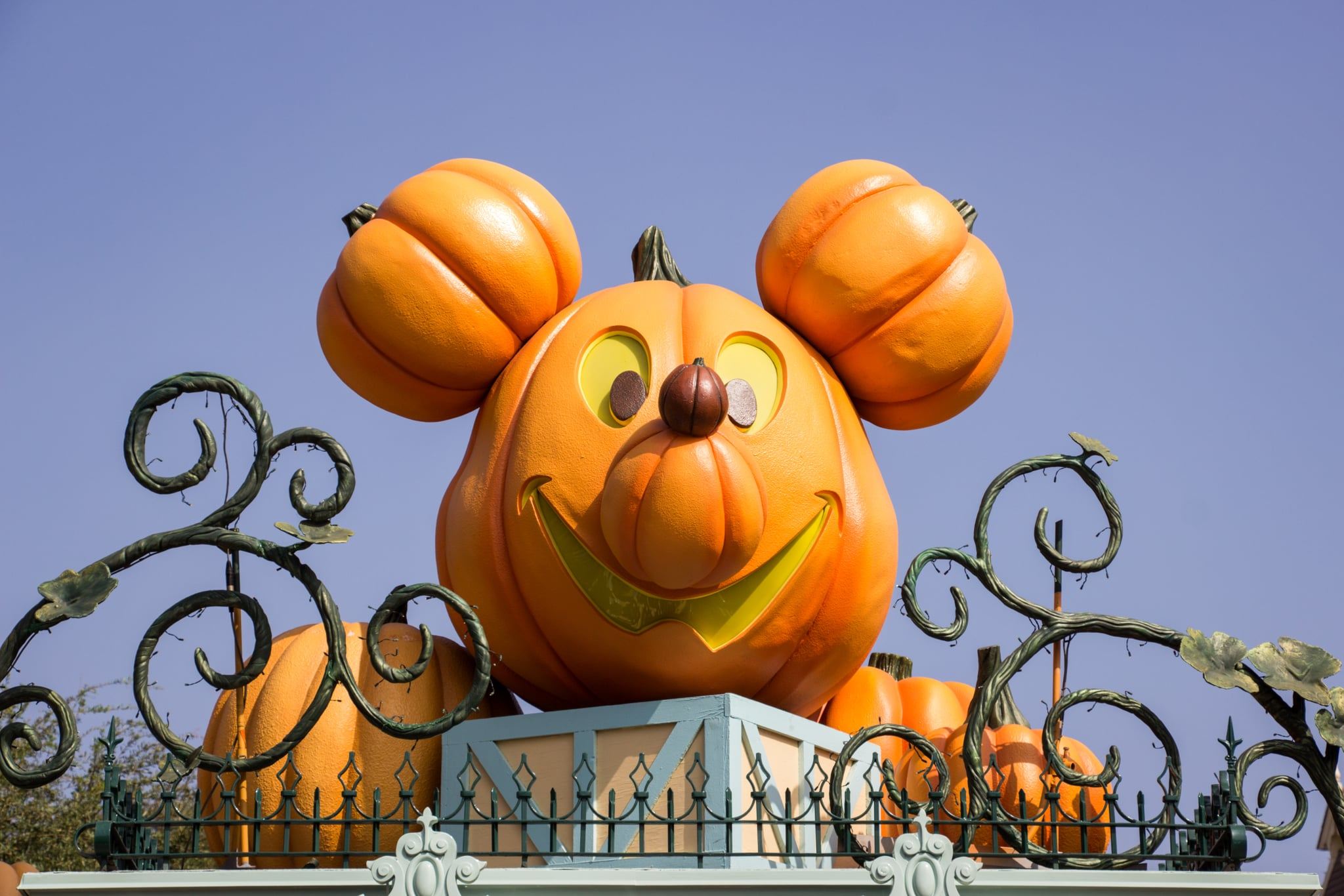 share this link - When To Decorate For Halloween
