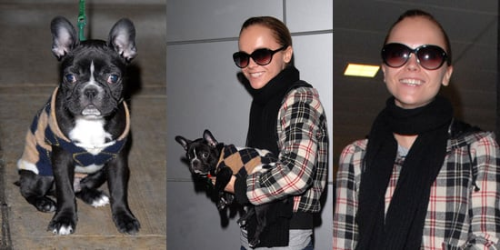 Penelope's Christina Ricci and Her Cute Puppy Ramon Arrive in New York