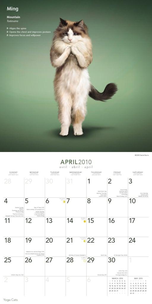 April —Mountain Pose