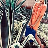 Massimo Dutti, Spring 2012. Source: Fashion Gone Rogue