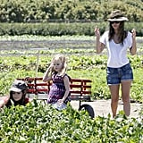 Rachel Bilson and her sisters loaded up a wagon.