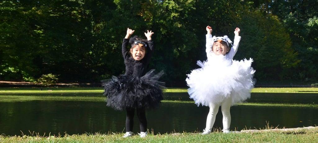 Swan Lake Ballerinas