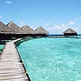 Leo: Tahiti (July 23 to Aug. 22)