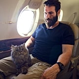 Their Cats Get to Fly in Private Jets