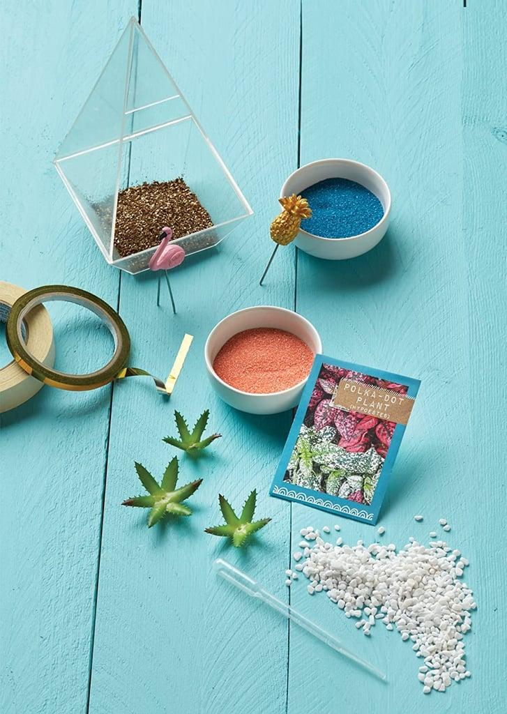 Craftivity Tropical Terrarium Kit