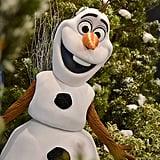 Hollywood Studios: Olaf Meet and Greet