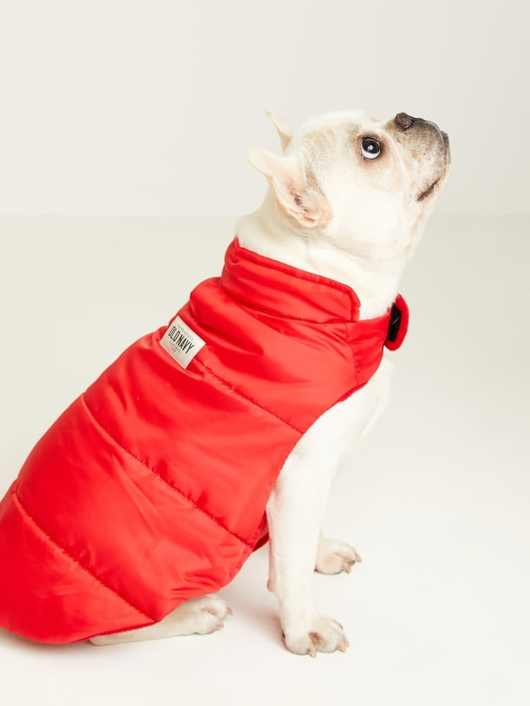 Old Navy Dog Clothes