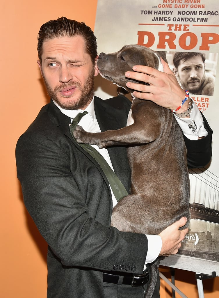 Tom Hardy S Date For The Premiere Of The Drop Was A Puppy