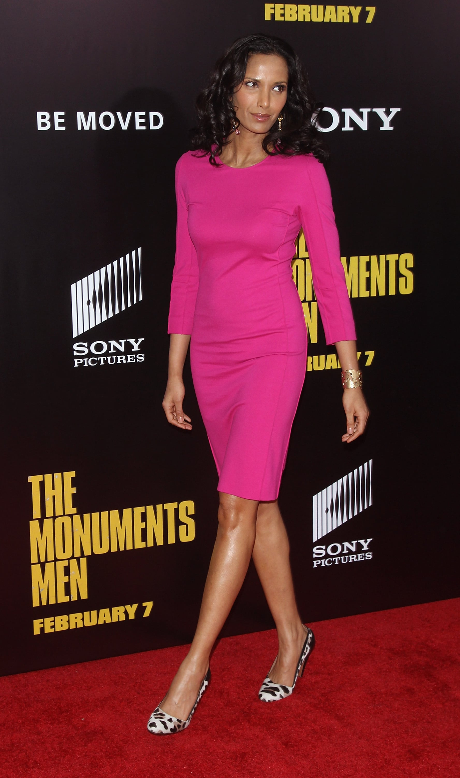 Padma Lakshmi brought some color onto the carpet.