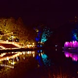 River of Lights Show