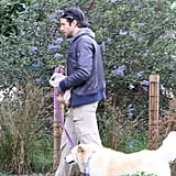 Bradley Cooper hiked in LA with Charlotte, his Chow-Golden Retriever mix, in December 2009.