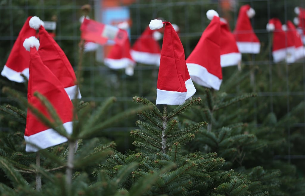 Santa hats topped tress at a Berlin Christmas tree lot.