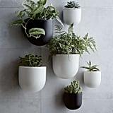 """Ceramic Wallscape Planter 6"""""""