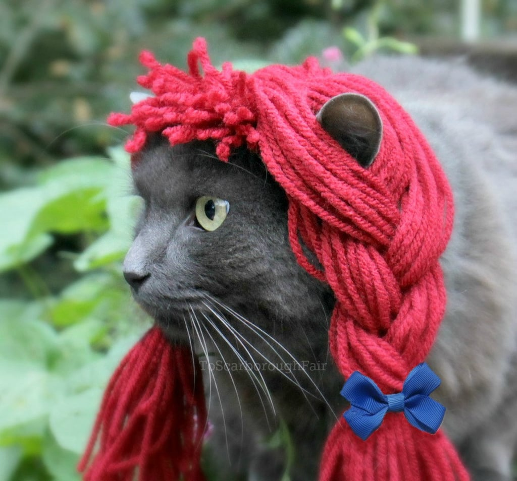 diy pet costume ideas popsugar smart living