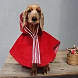 Little Red Riding Hood Dog Costume Cape
