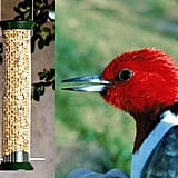 Mesh Cling Feeder and Peanuts