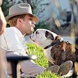 Ryan Gosling kissed a bulldog on the set of The Gangster Squad.