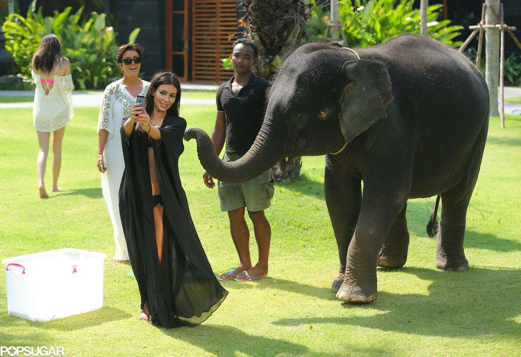 Kim Kardashian Taking Selfie With Elephant in Thailand