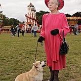 This Queen Elizabeth II look-alike knows that the perfect accessory is a cute Corgi.