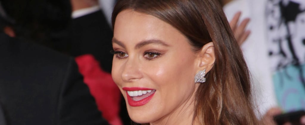 Sofia Vergara Responds to Instagram Troll