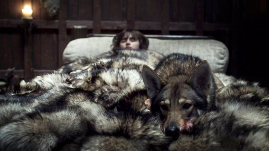 where are the starks 39 direwolves on game of thrones popsugar entertainment. Black Bedroom Furniture Sets. Home Design Ideas