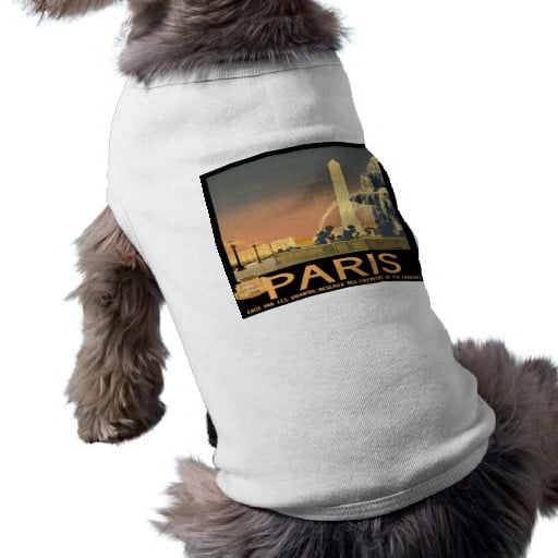Think your pooch can't pull off the globe-trotter trend from the Spring 2013 runways? Think again. This Paris vintage travel poster t-shirt ($21) by The Electric Image is one of many locales from its line, which includes countries from Chile to China.