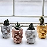 Geometric Skull Concrete Planter