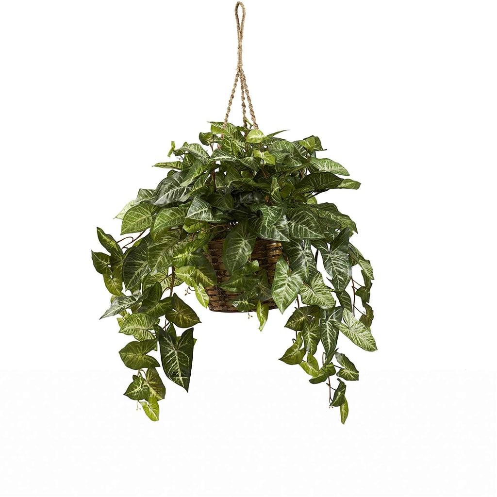 Nearly Natural Nepthytis Hanging Basket