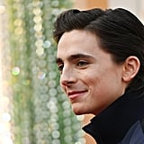 Timothée Chalamet's Hair at the 2020 Oscars