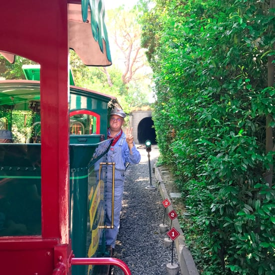 Disneyland Railroad's New Route 2017