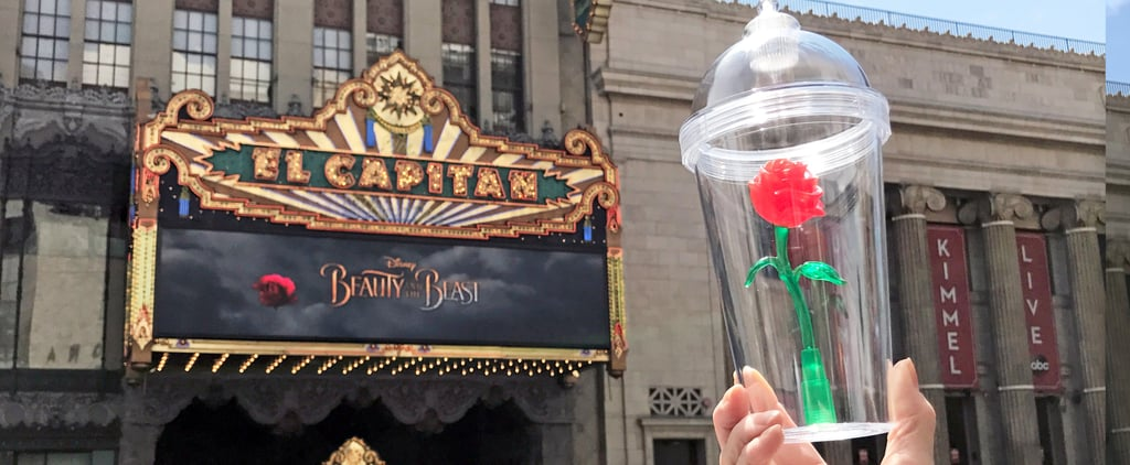 The 1 Unexpected Place to Find the Beauty and the Beast Rose Cup