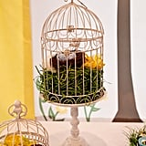 Bird-Cage Decor