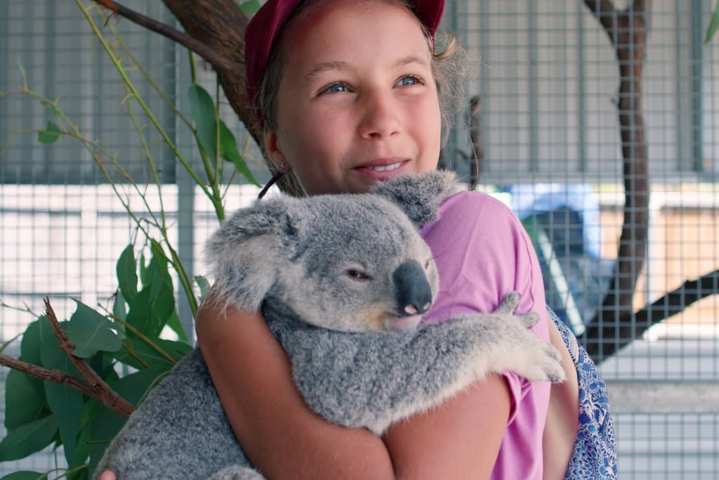 Izzy Bee's Koala World is easy for kids to understand.