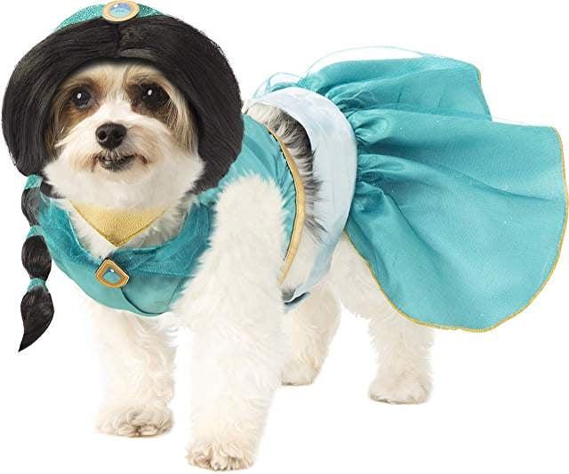 Princess Jasmine Dog Halloween Costume