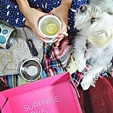 @meganquint and her pup sharing the Must Have experience #gooddog #reveal #december #2014 #regram #subscriptionbox