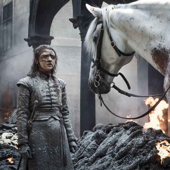 Significance of Arya and the White Horse on Game of Thrones
