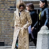 Invest in a Snakeskin Version À La Anna Wintour