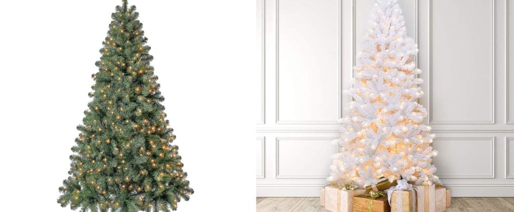 This Christmas Tree Puts Itself Up