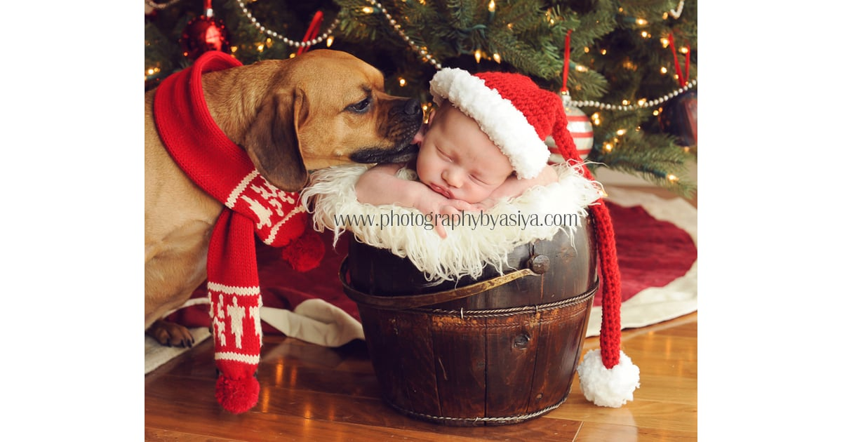 Baby Toddlers Kids Parenting These Baby And Puppy Christmas Photos Will Make Your Heart Explode With Holiday Cheer Popsugar Family Photo 6