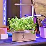 Indoor Smart Garden ($70)