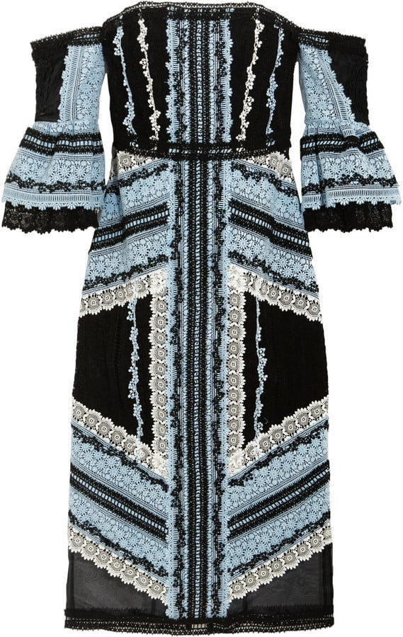 Erdem Sissy Off the Shoulder Dress ($7,440)